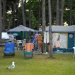 Camping Lots Medulin